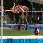 High Jump Surfacing in Adeyfield 6